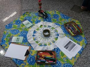 Saídas a Campo a Câmaras de Vereadores do entorno da Baía Babitonga mobiliza participantes da Formaç