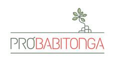 Grupo Pró-Babitonga dá a largada ao processo eleitoral de novos integrantes.  Entidades socioambient