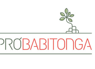 Grupo Pró-Babitonga define logomarca