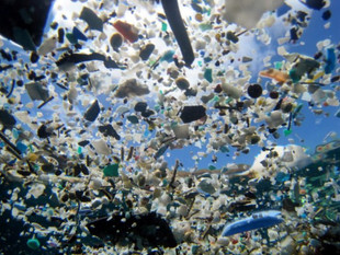 Oceanos terão mais plástico do que peixes dentro de 35 anos