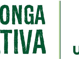 Conheça a Agenda Integrada de Ecocidadania facilitada pelo Projeto Babitonga Ativa (Univille)