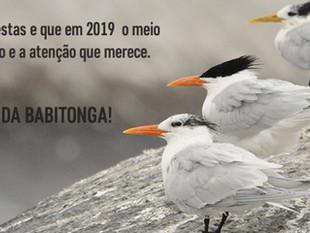 2018 está chegando ao fim com importantes conquistas do Grupo Pró-Babitonga
