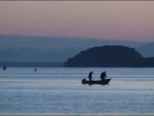 Projeto Babitonga Ativa será apresentado no Congresso Internacional de Conservação Marinha, em julho