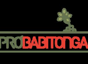 """Artigo: """"Patrimônio natural das restingas da baía Babitonga, Santa Catarina, Brasil"""""""