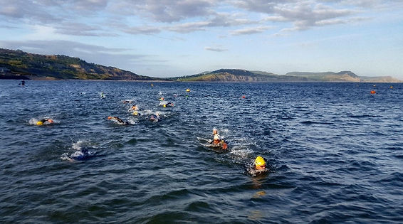 Open Water Swimmimg Groups in Lyme Regis, Dorset