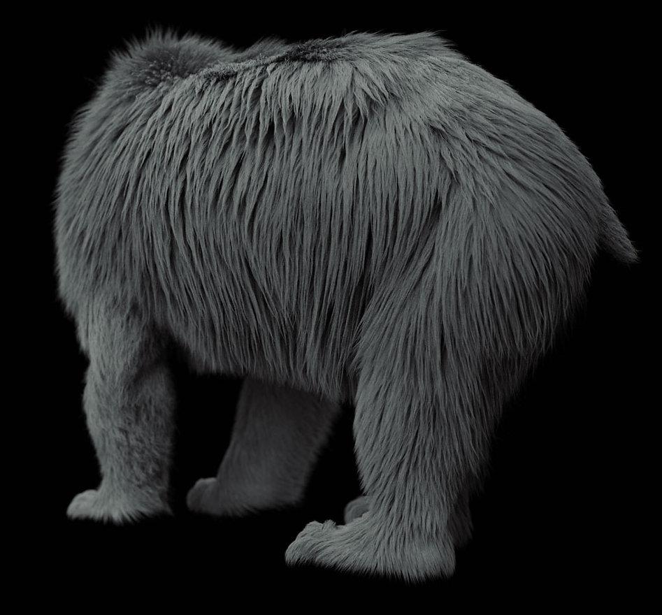 Bear_06.jpg