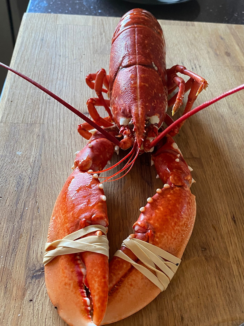 Lobster from BH Fish