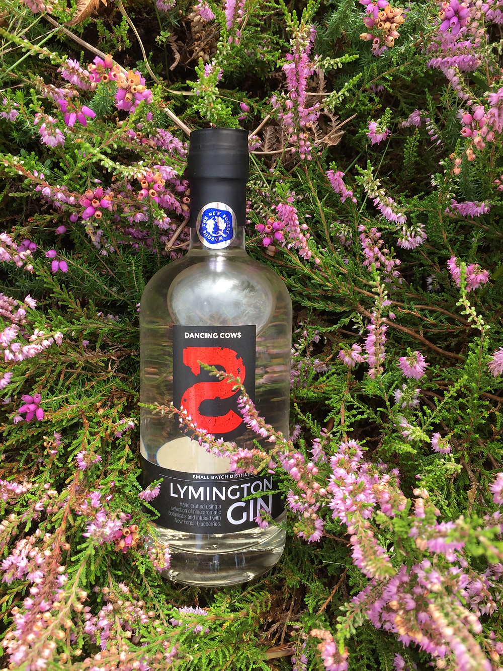 Dancing Cows gin in New Forest heather