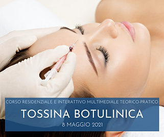 080521 TOSSINA.png