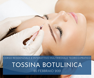 200221 TOSSINA.png