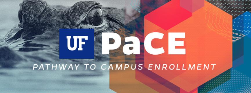 Social Media Graphics for UF PaCE Program