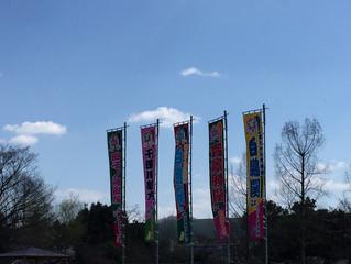 今日は、大相撲豊岡場所に。