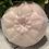 Thumbnail: Coconut Goat Milk Soap