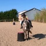 pony games katbalous
