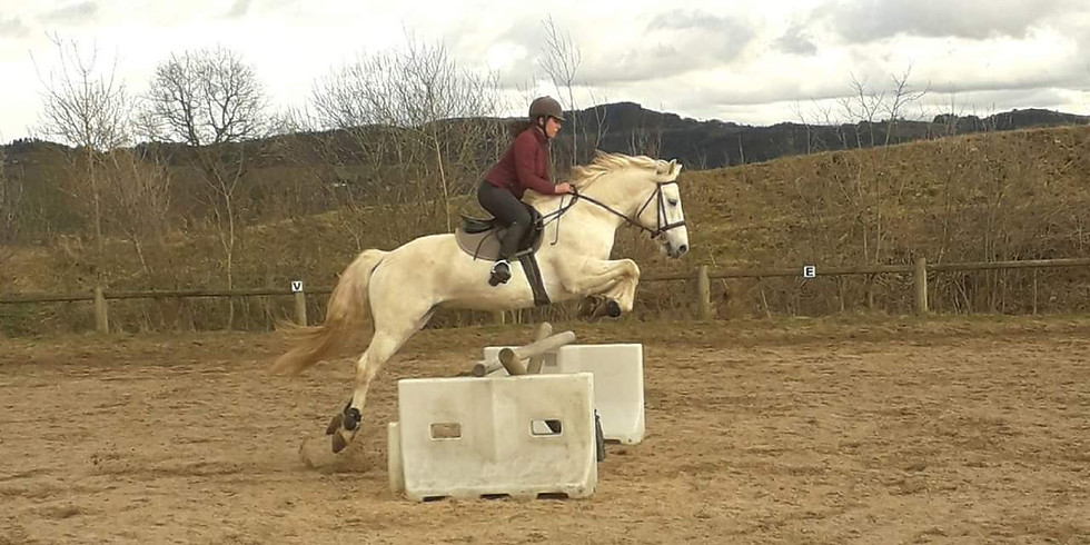 Stage Saut d'obstacle