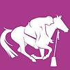 Logo-Pony-Games_imagelarge.png