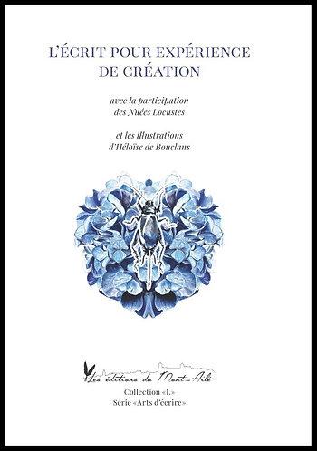 L'écrit pour expérience de création