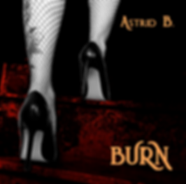 Burn Cover 10.png