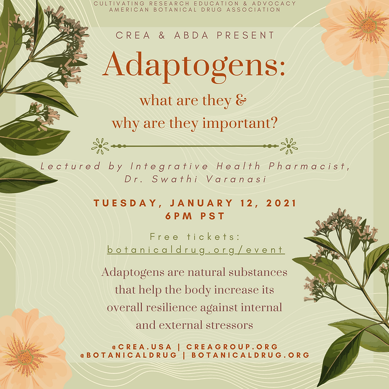 Adaptogens: What Are They & How Do They Work?