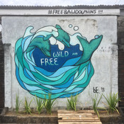 The Dolphin Project (BALI)
