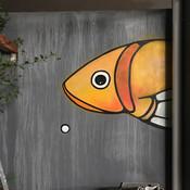 Fish Face IV (MELBOURNE)