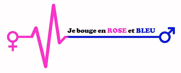 logo rose et bleu retenu.jpg