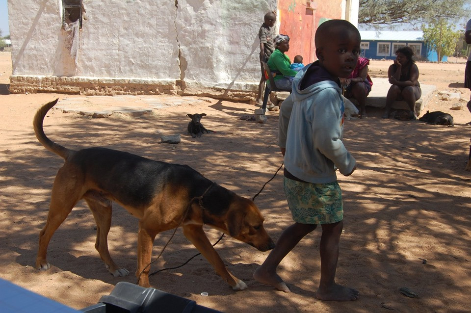 Rabies and anti-parasite treatment for follow-up clients