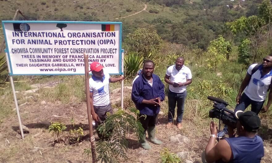 Chomba Community Forest Project, and OIPA-Cameroon initiative