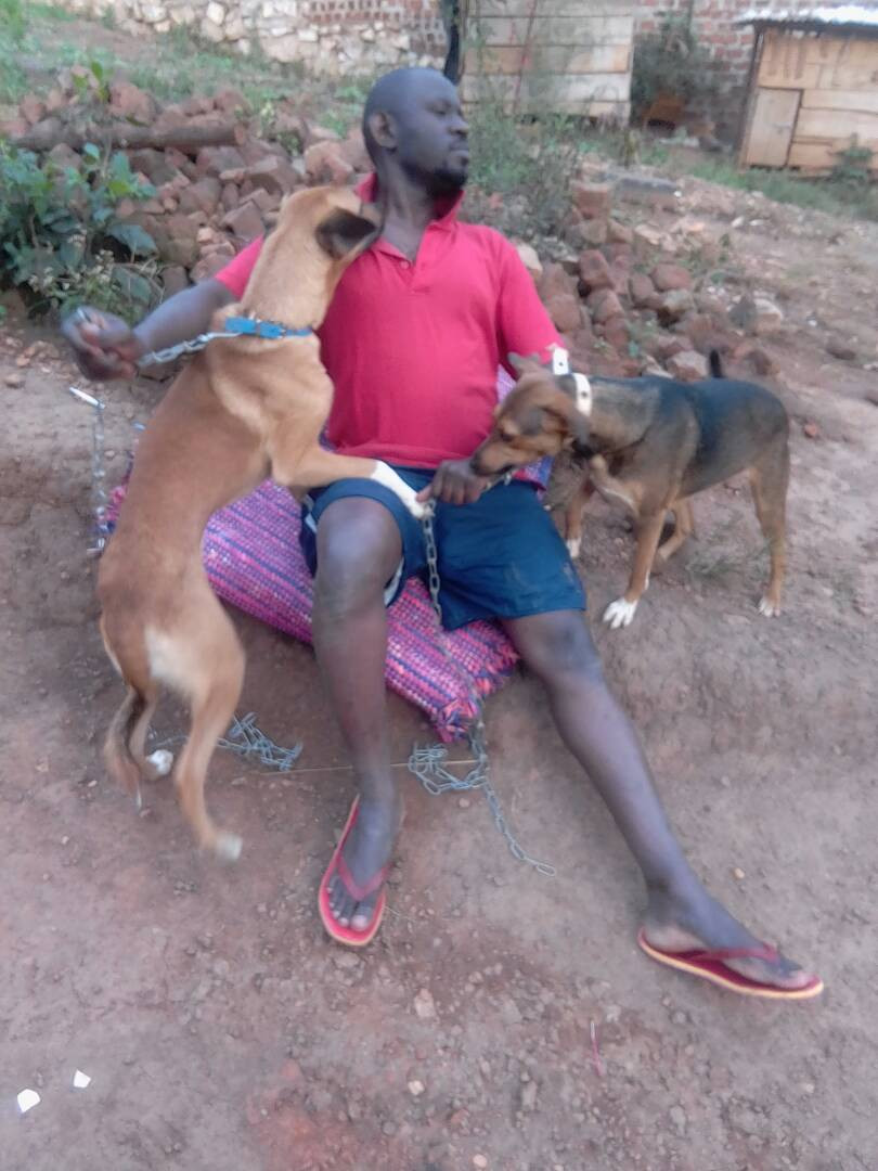26 July home visit-Walube Christopher adopted 2 USPCA dogs at the end of December