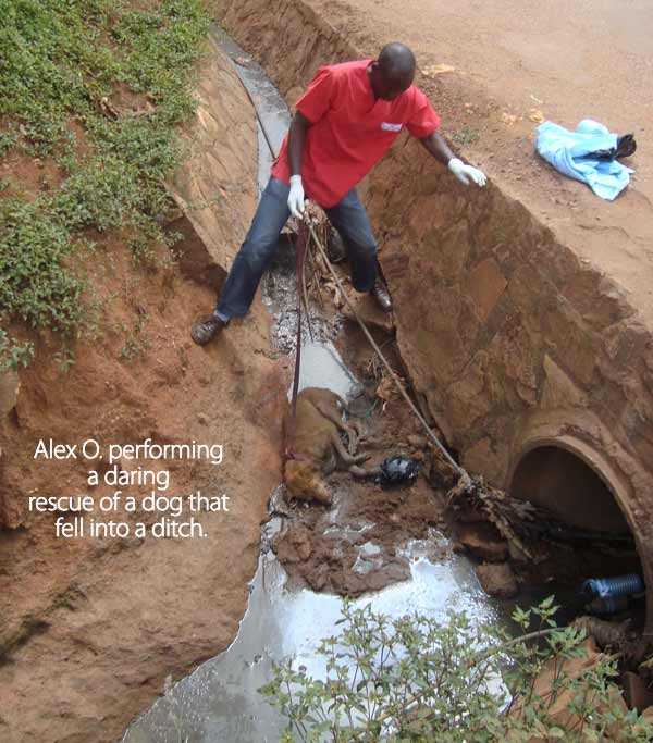 Alex O. rescues dog that was injured and stuck in a ditch