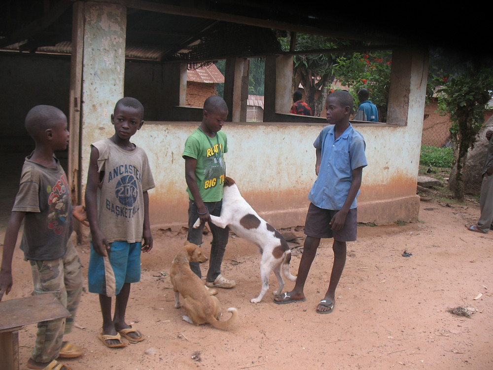 The 1st clients for the LAWCS Animal Care Clinic