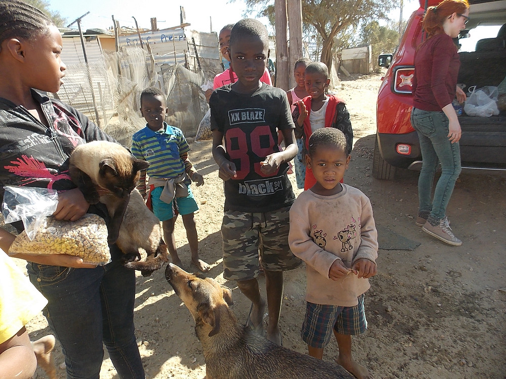 July Katutura visit-a Siamese cat was brought to the feeding/dipping location!