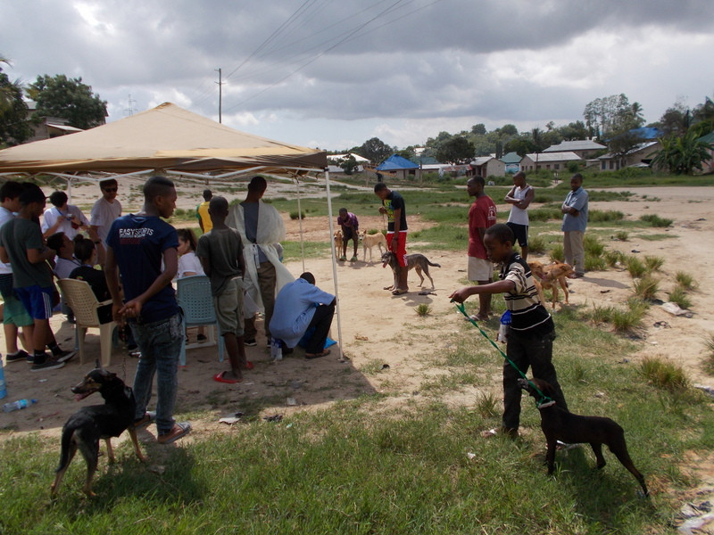 TAWESO vet clinic supported by AKI donors