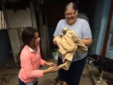 US Embassy family helps Pilar bathe dogs