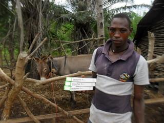 Donkey owner