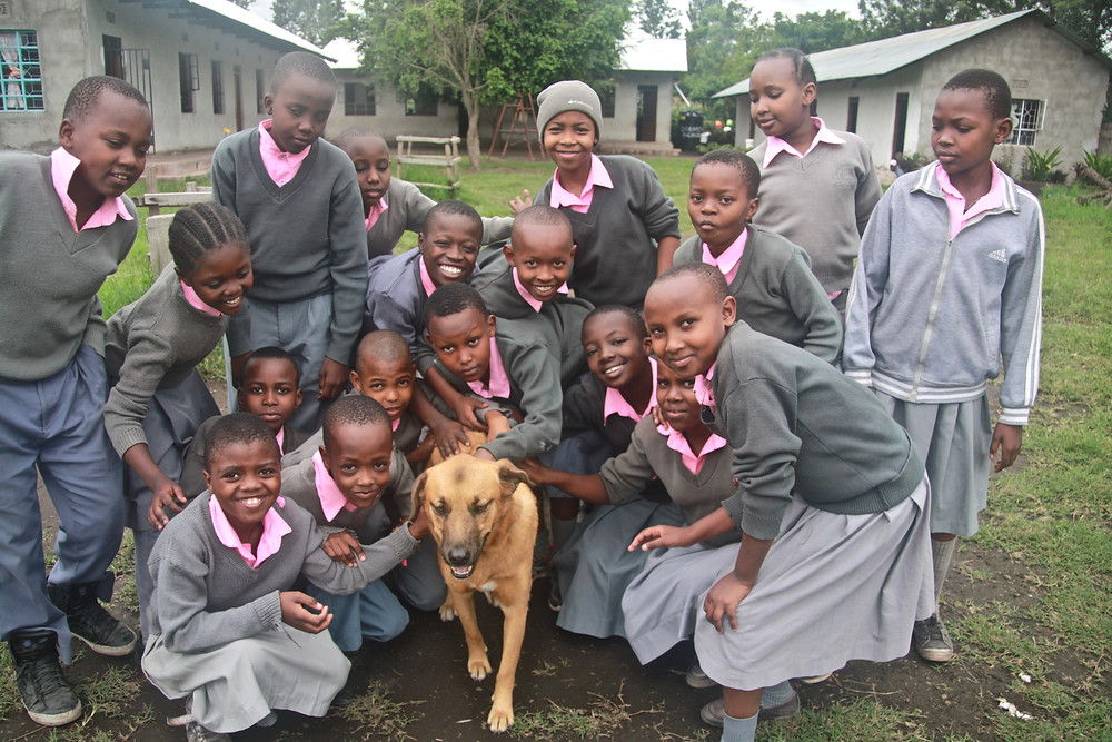 School children not only want to touch dogs now, they love to pose for pictures with dogs!