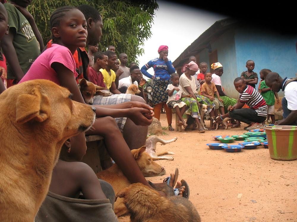 Joseph dishing out dog food