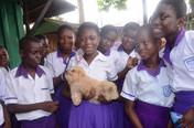 Village Pets and Gardens dzorwulu with a puppy.JPG