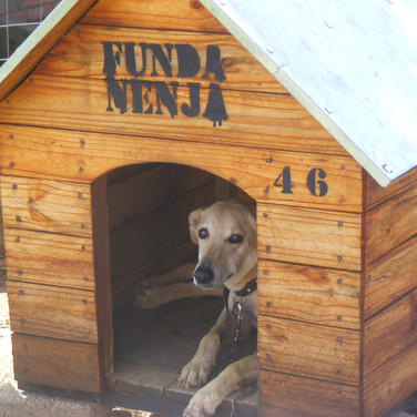 Funda Nenja Dog House