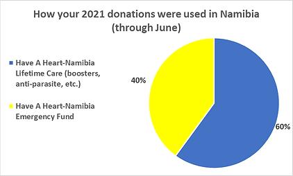 Namibia HAH through June.png
