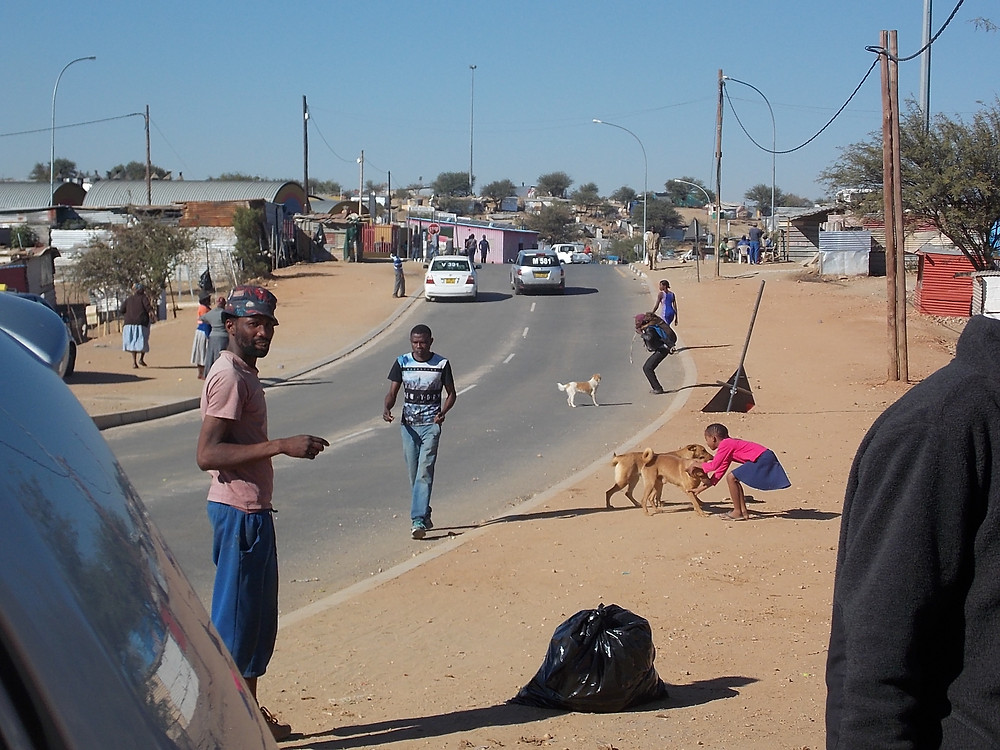 Young girl encourages her dogs to follow her to the Katutura Pet Care Project location
