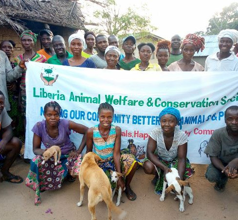 Helping Animals in Liberia-2018
