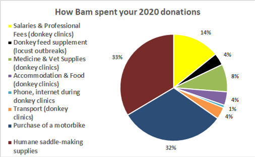 Bam pie chart 2020.png