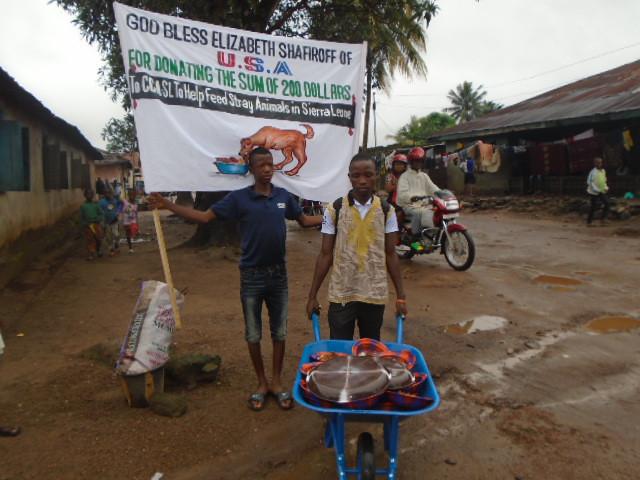 Street Dog Feeding Day in Sierra Leone thanks to Elizabeth