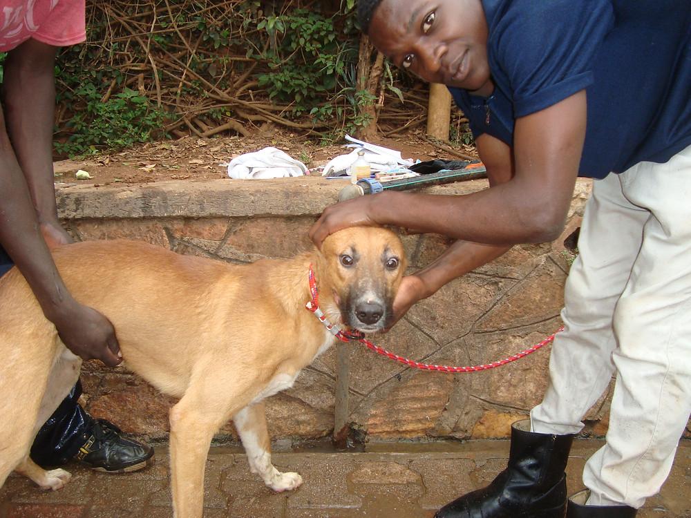 The Uganda 16 get their 1st baths!