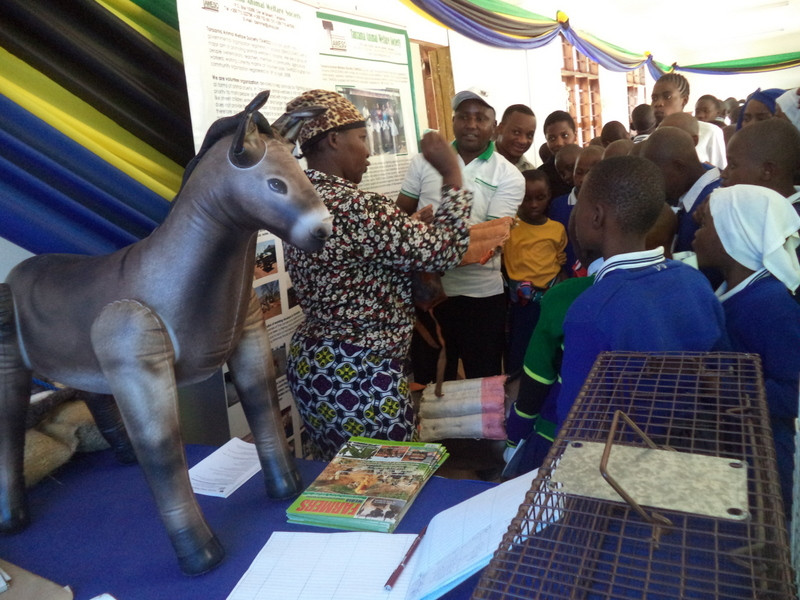 TAWESO at an event showcasing their donkey welfare efforts