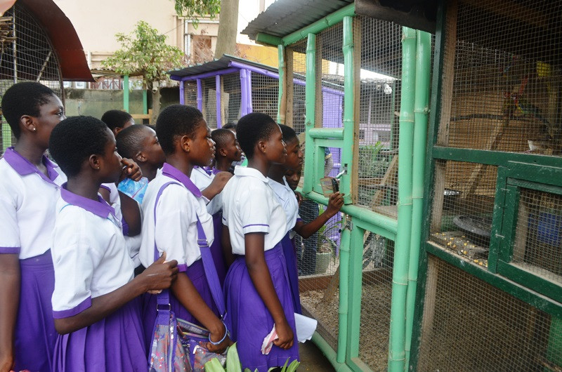 Students are in awe of the beautiful birds at Village Pets and Gardens