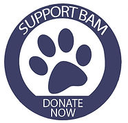 Support BAM