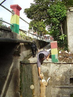 Deborah rescuing Girl from a drainage di
