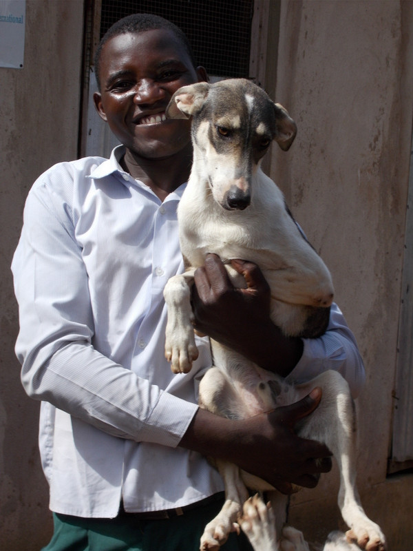 TAWESO's animal handler loves the dogs